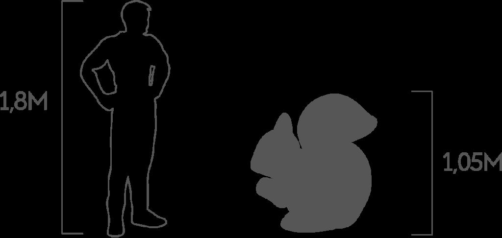 пропорции белка