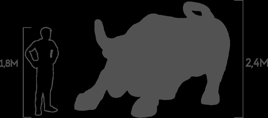 пропорции бык