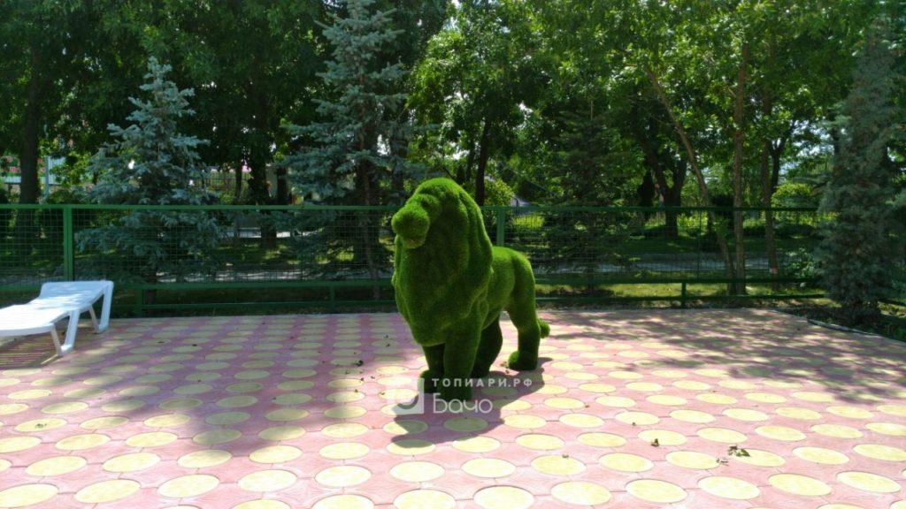 Топиарная фигура Лев стоячий