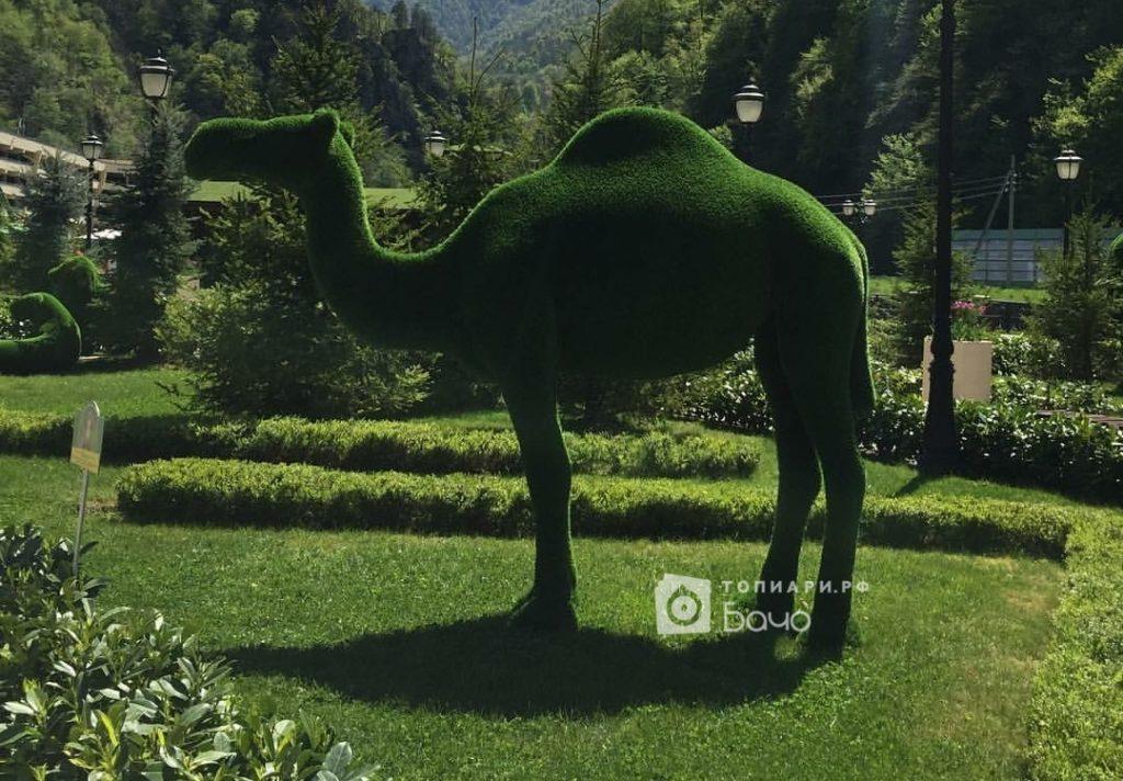 Ландшафтная фигура Верблюд одногорбый