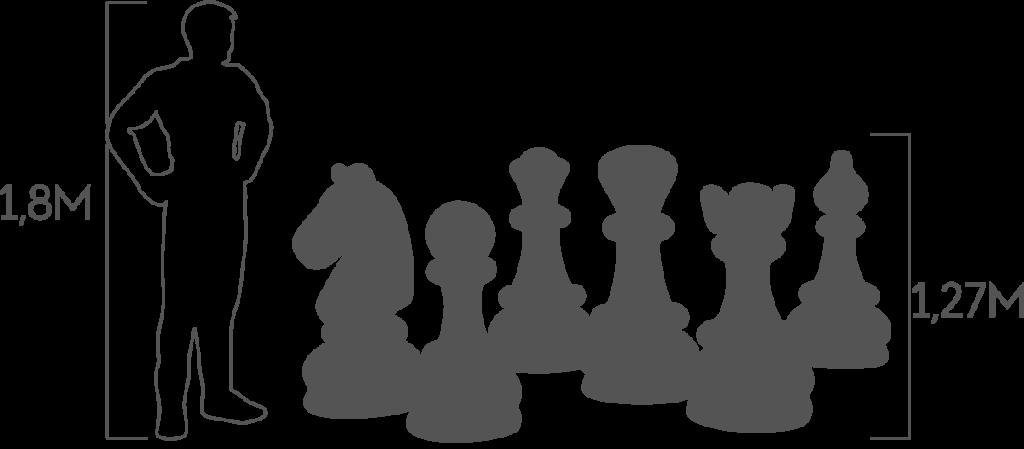 пропорции шахматы