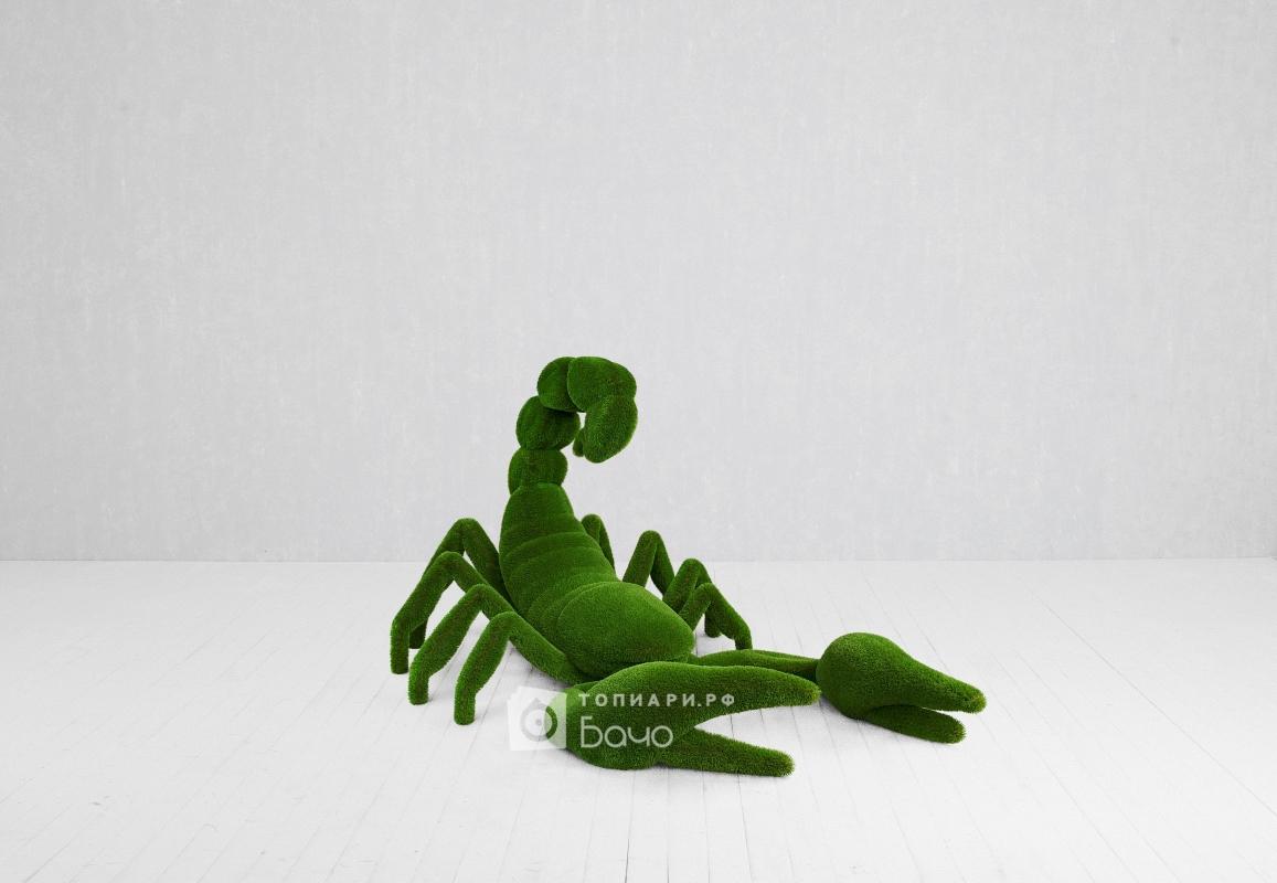 Ландшафтная фигура Скорпион