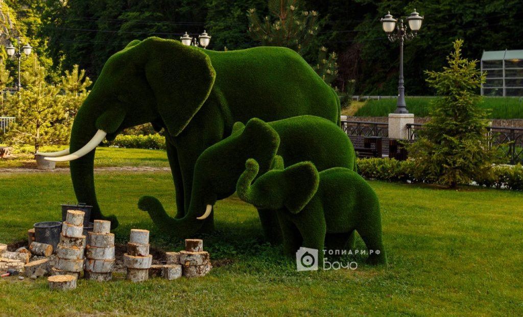 Топиари Слоны 2