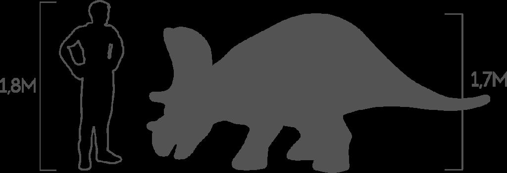 пропорции трицератопс малый