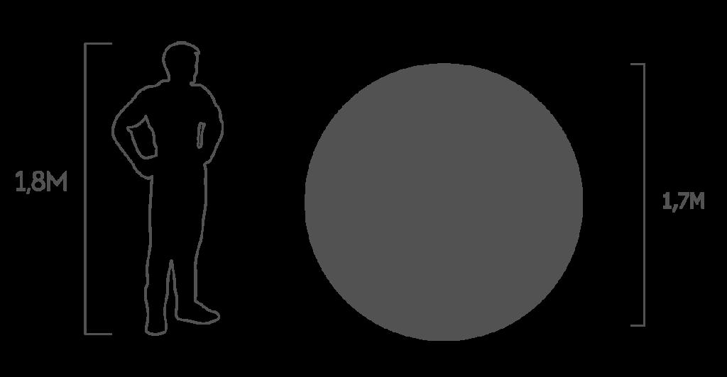пропорции мяч