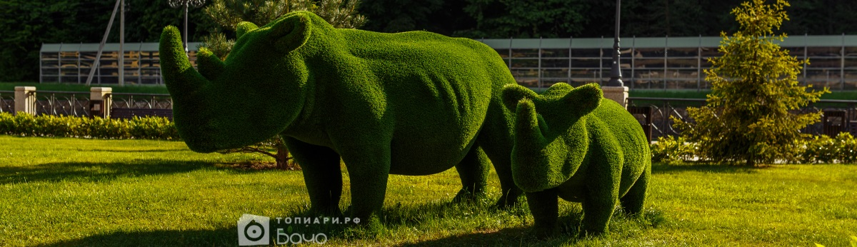 топиари носороги