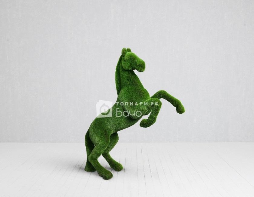 Конь на дыбах 4