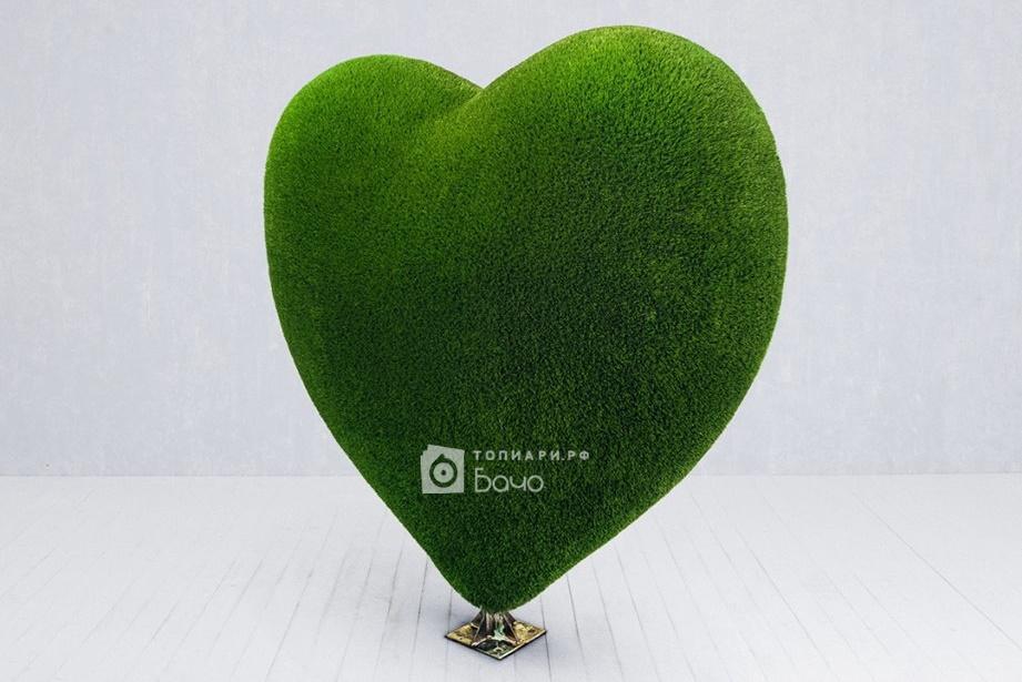 топиари сердце