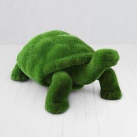 Топиари черепаха