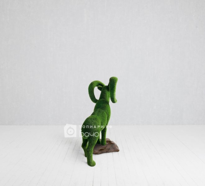 Топиарная фигура Горный козел