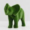 Слон малый