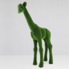 Жираф малый